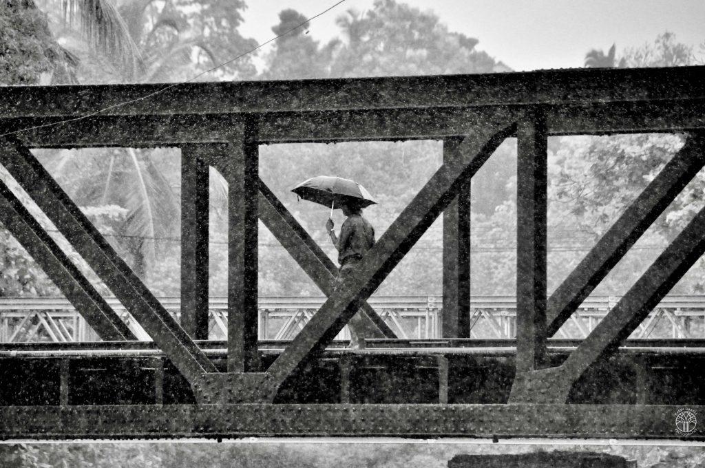 Sri Lanka , Altugama bei Regen (0047)