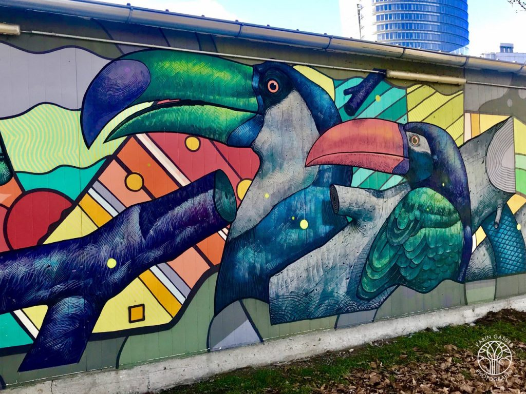 Februar 2019: Straßenkunst am Donaukanal (0083)
